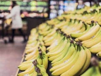 Bananes chez Whole Foods Market