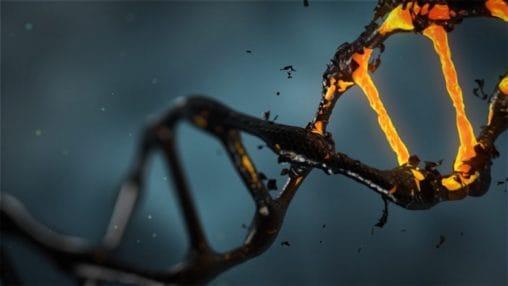 L'ADN est un des domaines de recherche des biotechs américaines