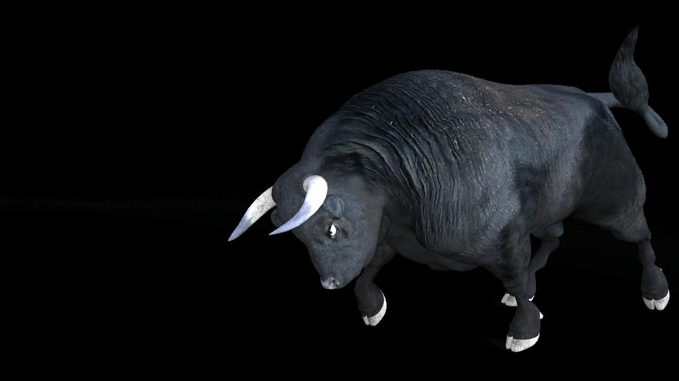 Bull - comment débuter en bourse en 2020