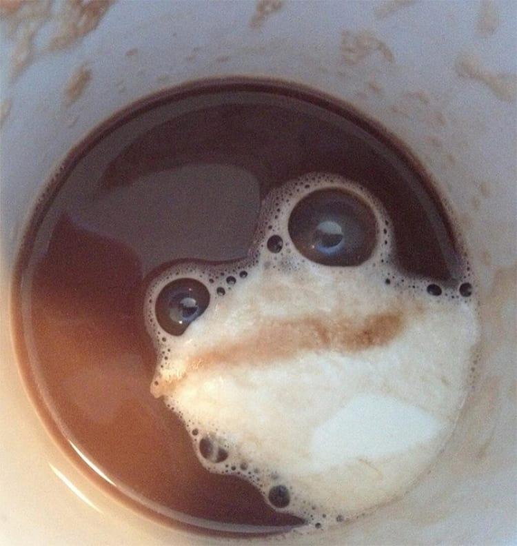 Paréidolie au fond d'une tasse de café